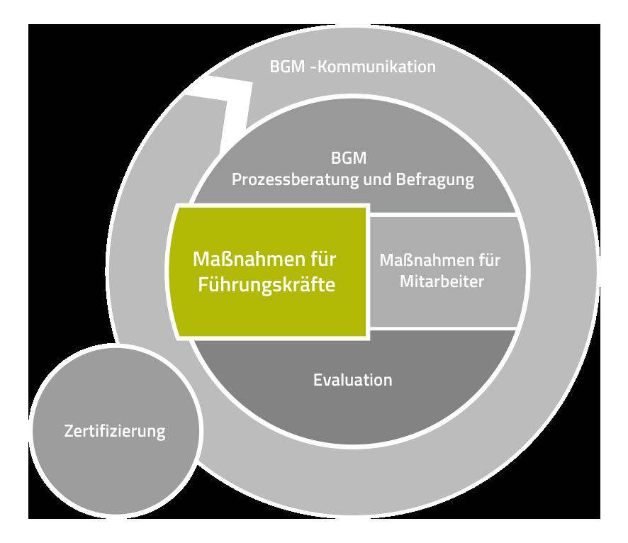 Produkt Navigation Prozessberatung und Befragung